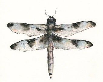 nature themed artwork - watercolor dragonfly