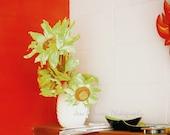 Still Life Photography, rustic flower photos, floral wall decor, Red Black White Green Yellow decor Silk flower print 11x14 Fine Art Photos