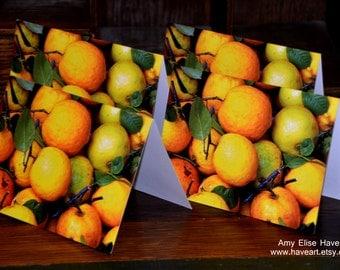 4 Pack Note Cards - Photography - Lemons - Guatemala