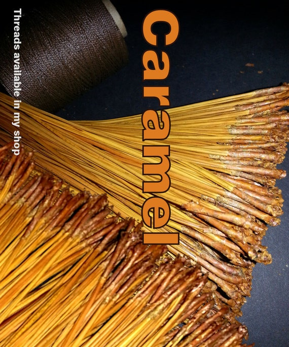 Pine Needles for Gourd Crafts or Basket Coiling - Dyed Florida Long Leaf  - CARAMEL