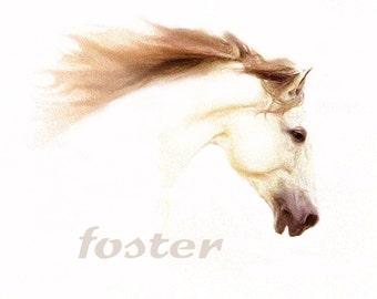 horse art, print, bronco, mustang, pony, stallion, mare, painting, white horse, horse bucking, rodeo, wild stallion, palomino, colt, nag