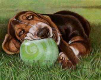 Basset Puppy My Ball Signed Print Free Matching card