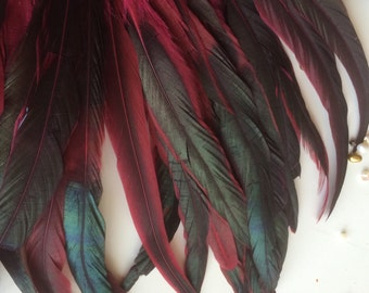 COQUE TAIL Feathers  Loose / Iridescent Black and Fuchsia,  /  220