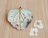 Pressed Hydrangea Petal Brooch Hand-painted metal pin