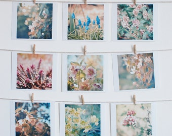 Nature Photography, Spring Flowers, Floral, Sage and Olive, Pink, Vintage Style Home Decor, Set of Nine Mini Prints - The Arrival of Spring
