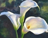 Calla Lilies Watercolor Painting Print by Cathy Hillegas, 8x10, floral watercolor, lily art  white, blue, purple, yellow green, flower art