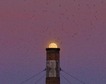 "Simple Nature Photography ""NightFall"" Chimney Swifts, Purple Sky Black Birds Photo, Full Moon Art, Sunset Art Surreal Wall Decor, Bird Print"