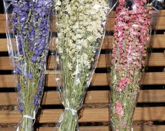 double bloom Larkspur dried stems-Blue-Pink-purple or White preserved flowers-4-5 oz bundles-Dried wedding floral in white