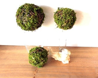 NEW Scattered Moss balls of assorted sizes-Vines and preserved moss-Wedding decor-Christmas decor
