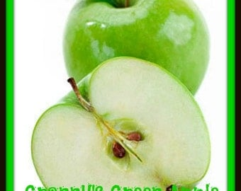 GRANNYS GReEN APPLE Scented Soy Wax Melts - Fruit Scent - Highly Scented - Soy Tarts - Hand Poured - Handmade In USA
