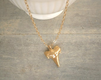 Gold Necklace, Shark Tooth Necklace, Minimalist Jewelry, Gold Shark Tooth, Simple, Everyday Jewelry, Layering Necklace