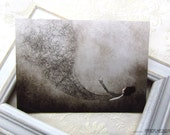 La plume - Postcard