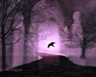 Surreal Nature Photography, Fairytale Purple Trees Ravens Print, Fantasy Purple Woodlands Print, Gothic Purple Nature Trees Raven Wall Decor