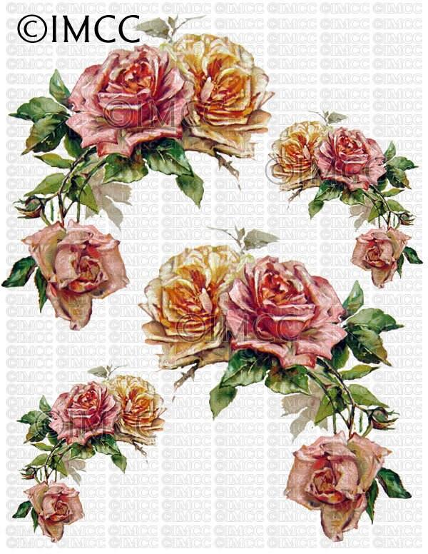 Instant Digital Download Cottage Cabbage Pink Roses Yellow Flowers Floral Vintage Era Transparent Background PNG