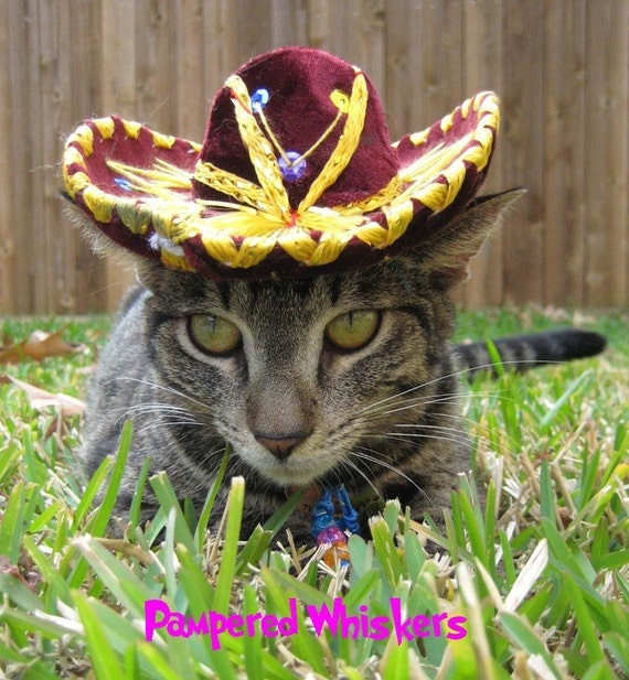Sombrero for dog or cat - Customizeable Sassy Sangria