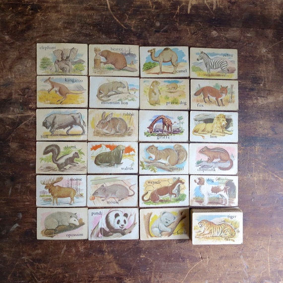 40+ vintage animal flash cards, word flashcards, animal picture cards, educational cards, 1950's flash cards, picture and animal flashcards