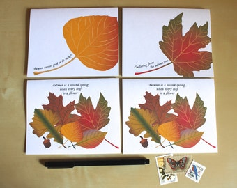 Fall Autumn Greeting Cards - Boxed Set of 4