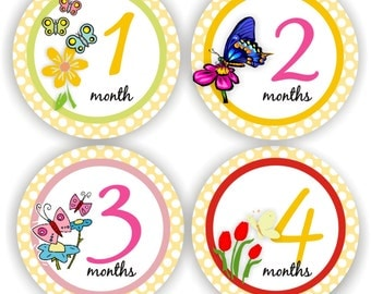 Baby Stickers - Baby Month Stickers - Baby Girl Monthly Stickers - Baby Shower Gift - Butterfly Baby Month Stickers