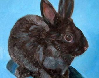 Black Bunny Rabbit - Original Painting - Oil on Panel - 8 x 10 - Maine Art