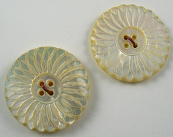 Vintage  Carved Shell Buttons - 2