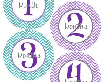 Monthly Stickers - Baby Month Stickers - Baby Purple and Teal Month Stickers - Watch Me Grow - Baby Shower Gift Photo Prop - Alicia-T