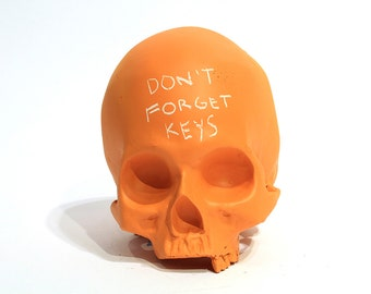 Homo sapiens chalkboard skull