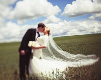 Classic Cathedral length veil II