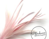 Goose Biot & Hackle Feather Hat Mount Trim for Fascinators, Wedding Bouquets and Hat Making- Rose Pink