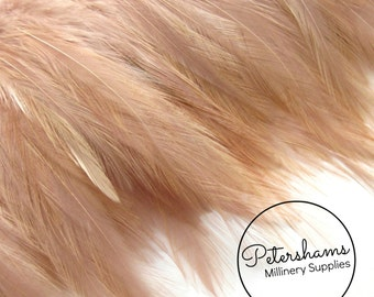 Hackle Feather Fringe for fascinators, millinery and crafts (Around 60 feathers) - Latte