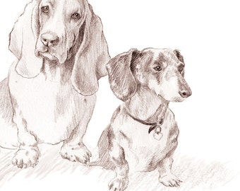 Dachshunds & Basset Hound - Set of 5 Blank Note Cards