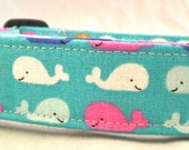 One Whale of a Time Multi Colored Whales on Ocean Blue Dog Collar Pink Orange White