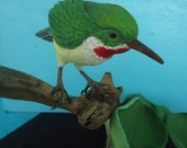 BIRD CARVING of a TODY Bird from Puerto Rico, Tropical  Decor Bird Carving, Hand Carved Bird Sculpture in Wood by Susana Caban