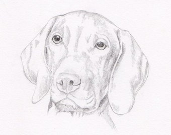 Vizsla Signed Personalized Original Pencil Drawing Double Matted Print -Free Shipping- Desert Impressions