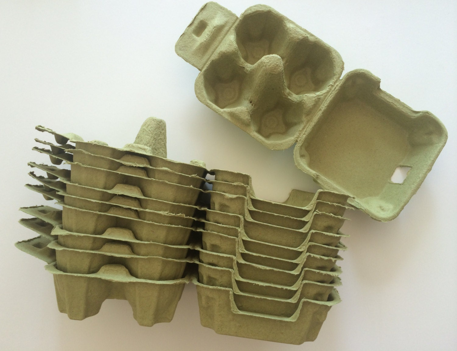 20 egg cartons in green 4 holding type for Design your own egg boxes