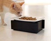 Modern Pet Feeder Cat Elevated