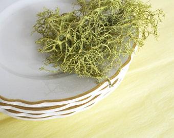 Four Homer Laughlin dessert plates. Restaurant ware, scalloped, mustard, ochre, stripe, diner style