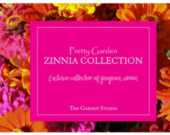 Zinnia,  Pretty Garden Zinnia Seed Collection | Gorgeous and Vibrant Zinnias for a Fantastic Cutting Garden - 10 packets!