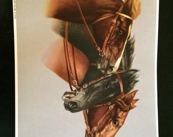 Vtg German Horse Print - 3 Horses 1 Black