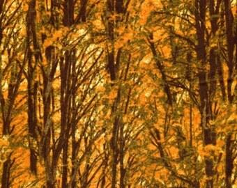 Fall Trees - Timeless Treasures - Half Yard