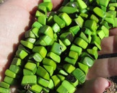 40 Mixed Lime Green Nut Beads, Chips, Organic Beads, Natural Beads, Vegetable Ivory Beads, EcoBeads