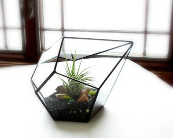 Glass Terrarium with Air Plant, Geometric Terrarium, Geometric Planter
