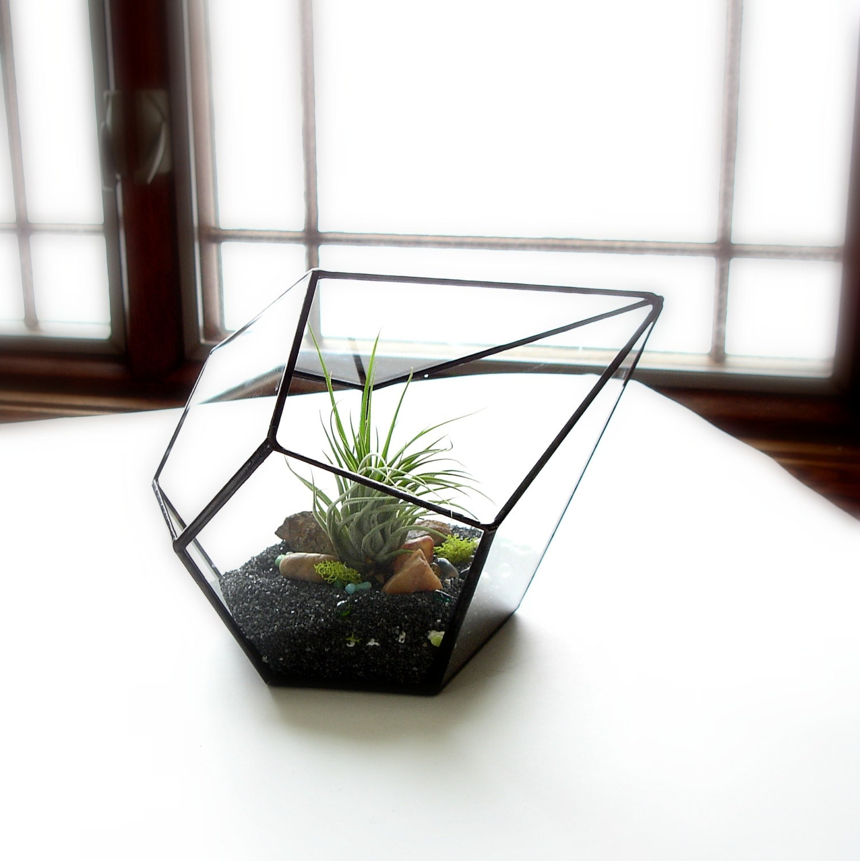 glass terrarium with air plant geometric terrarium geometric. Black Bedroom Furniture Sets. Home Design Ideas