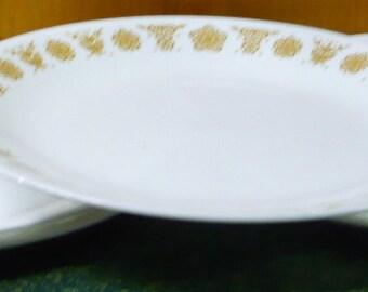 4 - Corelle - Butterfly Gold - Dinner Plates - 10 3/8 - EUC
