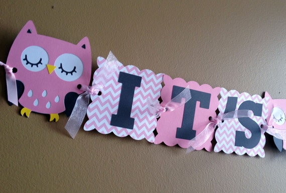 pink chevron owl baby shower banner baby shower decorations owl