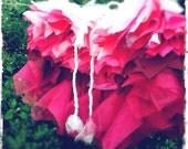 Ballet Tutu Burlesque Bustle - Pretty in Pink