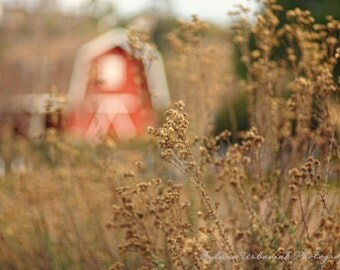 Rustic country photography Landscape photography Red  Barn Country Wall Decor Home decor Fine Art Photography Print