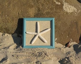 Turquoise Finger Starfish Frame