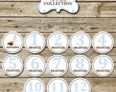 Milk and Cookies Monthly Banner - blue and brown - INSTANT DOWNLOAD | Milk and Cookies Monthly Stickers - Iron Ons | digital printable