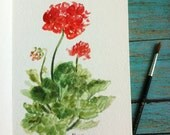 Geranium Plant Study in watercolor- red flowers