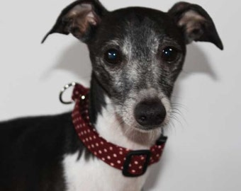 """Italian Greyhound 3/4"""" / 20mm width Limited Slip Buckle Collar for Italian Greyhounds and other small breeds Burgundy Polka Dot"""